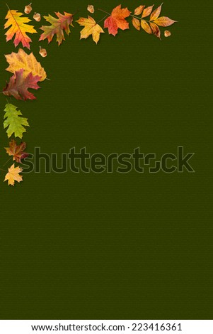 A frame made with autumn leaves isolated on light green background - stock photo