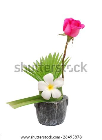 a frangipani and rose vase - stock photo