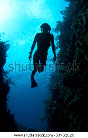 A free diver enjoys the crystal clear Caribbean waters. - stock photo