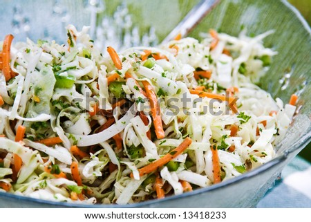 A fresh bowl of homemade coleslaw with dressing. - stock photo