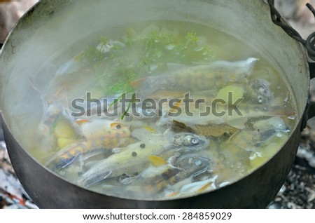 A fresh fish-soup in pot on nature. - stock photo