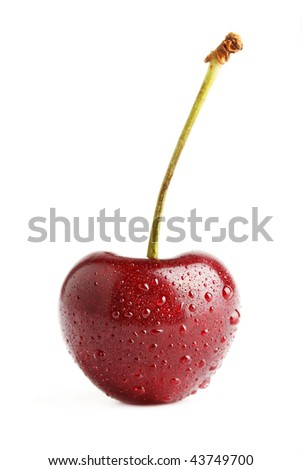A fresh, ripe cherry, isolated on a white background.