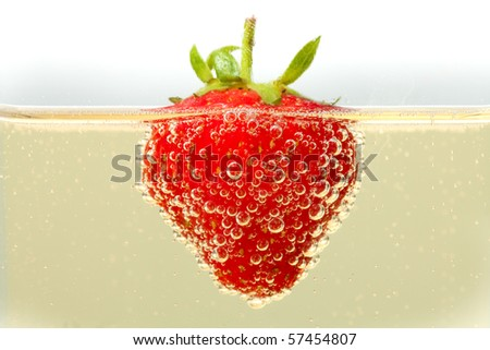 A fresh strawberry floating in a glass of champagne.  Lots of detail on the bubbles forming on the skin of the strawberry. - stock photo