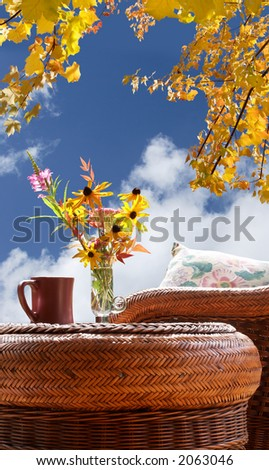 A front row seat for fall's glory - stock photo