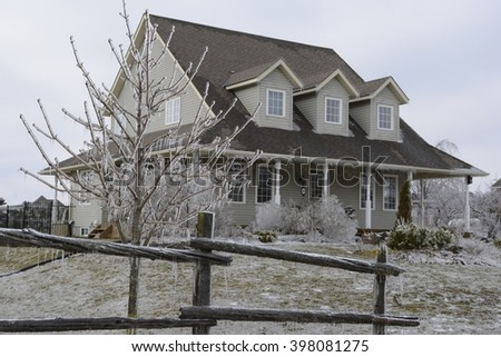 A frozen tree and house after an ice storm