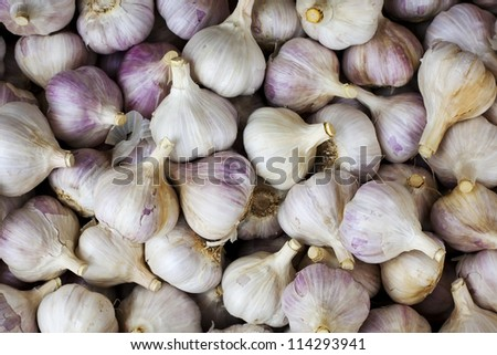A full frame of fresh organically grown garlic as found at a farmers market. - stock photo