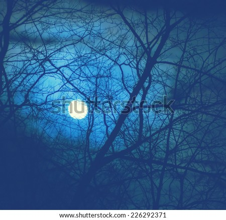 A full moon seen through a network of bare branches in a forest during a cloudy foggy evening.  Filtered for a retro, vintage look.  - stock photo