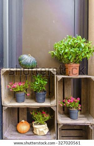 A garden detail in Sweden - stock photo