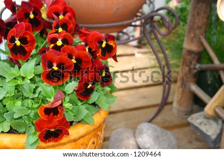 A garden planter with red flowers.