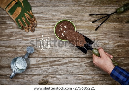a gardener adding soil to a potted plant - stock photo