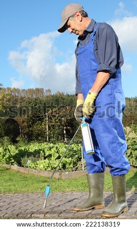 A Gardener  removing moss at Paving stones with flame thrower - stock photo