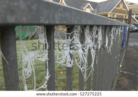 A gate with spiders webs covered by a thick frost.