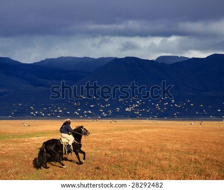 A gaucho riding his horse in Patagonia, Argentina - stock photo