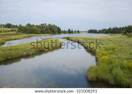 A gently flowing stream in rural Prince Edward Island, Canada. - stock photo