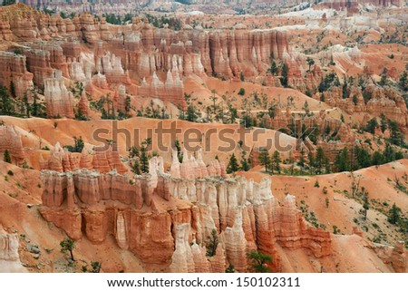 A geological landscape showing intricately patterned features created by wind erosion, and manifesting as what is called Hoodoos,in Bryce Canyon, Utah, USA