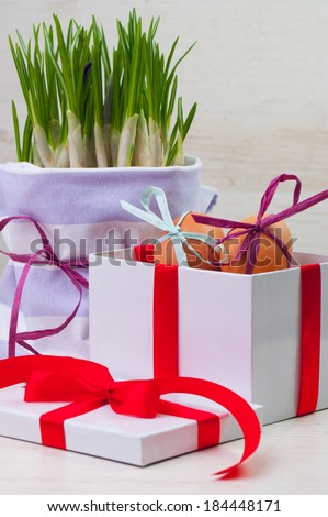 A gift box with two eggs and a spring plant pot - stock photo