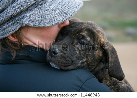 a girl in a hat holding a baby mastiff puppy - stock photo