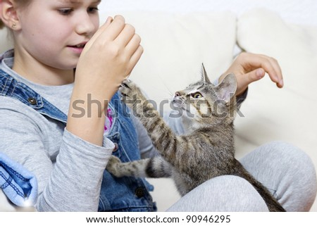 a girl is playing with a kitten - stock photo