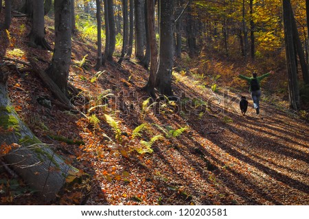 A girl running with joy in colorful autumn forest in the mountains - stock photo