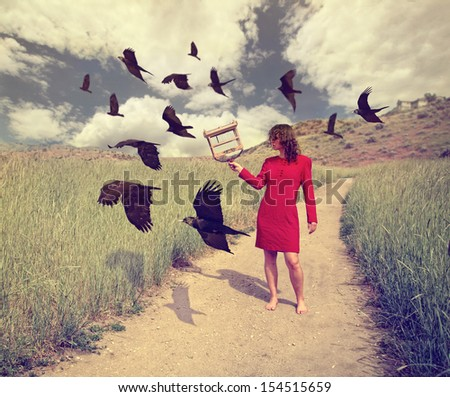 a girl walking through a field with a flock of ravens or crows toned with a retro vintage instagram filter effect action app - stock photo