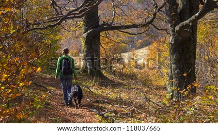 A girl walking with her dog in colorful autumn forest in the mountains - stock photo