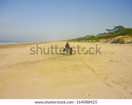A girl walking with his big pets on a deserted beach in a sunny day in winter. - stock photo