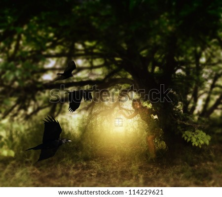 a girl with a lantern behind a tree watching birds fly - stock photo