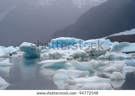 a glacier flows until argentino lake, in the argentinian patagonia - stock photo
