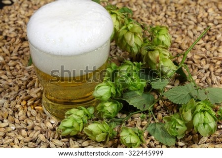 A glass of beer with malt and hops. - stock photo