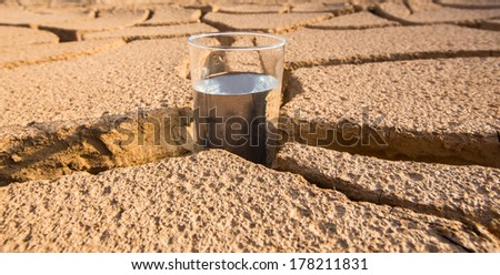 A glass of water on a parched soil during drought and dry season. - stock photo