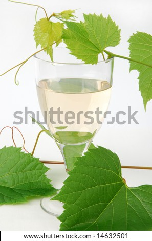 A glass of white wine