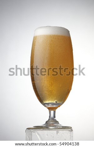 A glassfull of yellow beer.