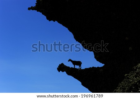 A goat silhouetted on the edge of a cliff. - stock photo