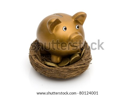 A golden coin bank and gold coins in a nest isolated on white, Saving for your retirement - stock photo