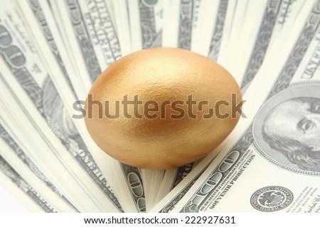 A golden egg on dollars - stock photo