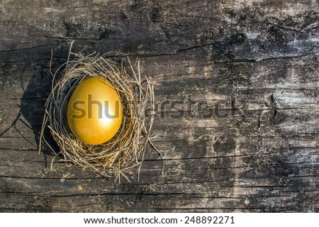 A golden egg opportunity concept of wealth and chance to be rich: World prosperity and investment concept: Chinese new year symbolic food of wealthiness richness prosper money roi investment return - stock photo