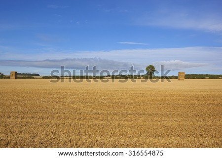 a golden harvested stubble field with a few hay stacks in the yorkshire wolds england under a blue sky in late summer