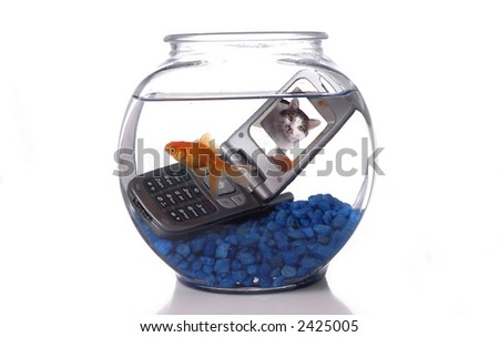 A goldfish in a bowl swims by a cell phone submerged in the water. A picture of a cat is displayed on the screen of the cell phone.