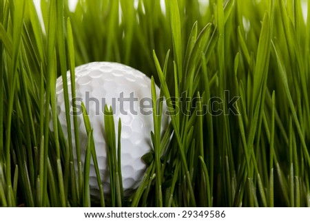 A golf ball sitting in the long grass - stock photo