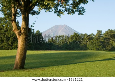 A golf course, Japanese style. - stock photo