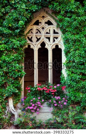 A Gothic window with flowers and green ivy walls in the scared Bebenhausen Abbey and Palace in South Germany