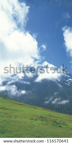 A grass-covered hill in front of the snowy mountain - stock photo