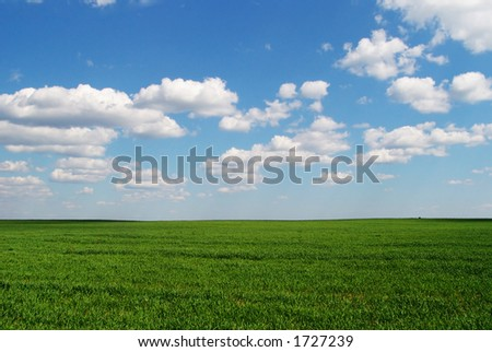 A grass field consisting only of grass and clouds in the sky - stock photo