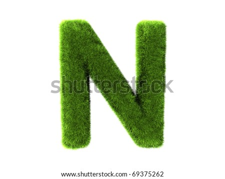 A grass n isolated on a white background