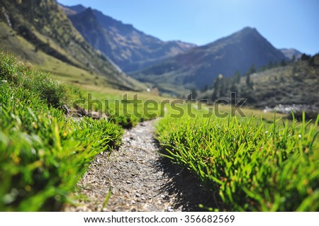 A grass path to the mountains - stock photo