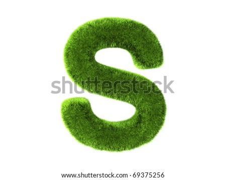 A grass s isolated on a white background - stock photo