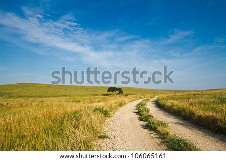 A gravel road going through the Flint Hills of Kansas. - stock photo