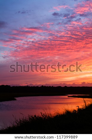 A great blue heron looks onto sunset over a tidal creek. - stock photo