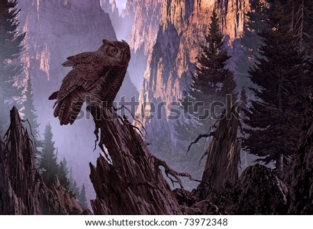 A Great Horned Owl perched on a pine tree stump in a mountain canyon, getting ready for the nights hunt. - stock photo