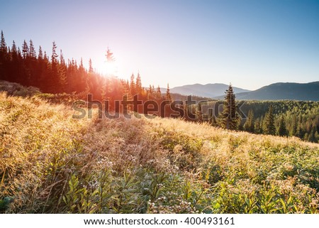 A great view of the hills glowing by sunlight at twilight. Dramatic and picturesque morning scene. Location place: Carpathian, Ukraine, Europe. Artistic picture. Beauty world. Warm toning effect. - stock photo